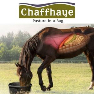 chaffhaye logo